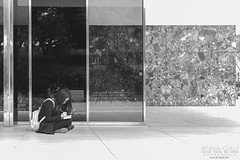 Sketching Mies  (light thru my lens) Tags: barcelona blackandwhite blancoynegro architecture reflections arquitectura strangers catalonia miesvanderrohe streetphoto catalunya behindthescenes blancinegre reflexes monocromtico barcelonapavilion pavellalemany 99strangers urbansketchers archdaily pavellmies espaisperalespersones