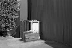 2016-266 (biosfear) Tags: sculpture nature corner berkeley plywood