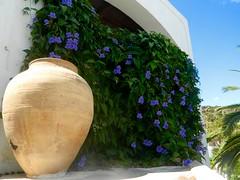 Panarea 2014 (Krees .) Tags: sicilia eolie 2014 panarea isole