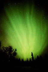 Porst SP Aurora Log Cabin 5 () Tags: alaska fairbanks northernlights auroraborealis