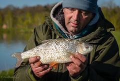 2lb 10oz Roach (dangerousdavecarper) Tags: uk fish fishing roach specimen angler angling