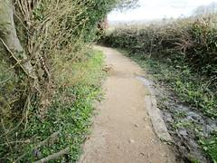 Templer Way Round the Bend Dartmoor (Bridgemarker Tim) Tags: paths dartmoor templerway haytortramway