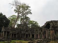 "Angkor: le temple Preah Khan <a style=""margin-left:10px; font-size:0.8em;"" href=""http://www.flickr.com/photos/127723101@N04/24000147420/"" target=""_blank"">@flickr</a>"