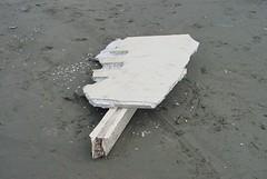 05252014 (johnchapman3335) Tags: june japan japanese washington marine debris tsunami moclips 2013 jtmd june2013 japanesetsunamimarinedebris