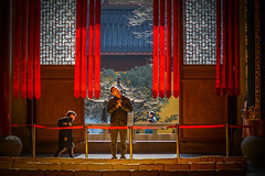 Pray Blessing - Hangzhou, China (, ) (dlau Photography) Tags: life china city travel red vacation people urban temple hall traditional prayer pray lifestyle style indoor tourist blessing hangzhou ribbon  custom visitor  sincere           mahavira       nikonflickraward