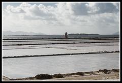 IMG_1765 (rinosaltini1) Tags: saline sicilia trapani marsala dello mozia riserva stagnone