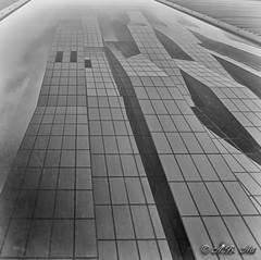Reflection (A.B. Art) Tags: vienna wien reflection building skyscraper austria spiegelung gebude fassade hochhaus donaucity dctower