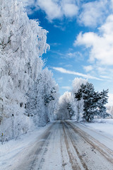 21012016 Great surounding.jpg (S_Weidbo) Tags: winter snow nature vinter frost sweden sn rimfrost canon24105mmf4 gettern2016