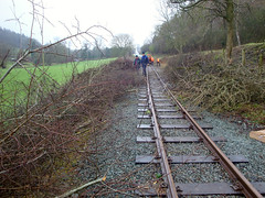 Hedge Brash (timabbott) Tags: wales track railway vegetation clearance powys llanfair brash welshpool