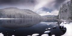 Mt Hood and a wintery Trillium, 2015 (Ben_Coffman) Tags: winter snow oregon freezing stormy freeze mthood pacificnorthwest winterstorm trilliumlake wintery bencoffman bencoffmanphotography