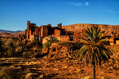 Kasbah Tamdakht (Danilo Atzori) Tags: old travel building tree photography ancient palm morocco maroc marocco marruecos palma kasbah exotique esotico daniloatzori