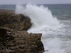 P1020098 (Cintia Billmaier.) Tags: strand mar meer marejada playa welle ola cantabria suances arbolada lumixtz60