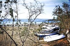 escondidas (Fnikos) Tags: sea sky costa tree nature skyline port puerto coast boat mar barca barco waterfront outdoor hidden cielo escondido nascosto