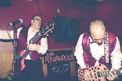 ThePolkaholics-7424 (PolkaSceneZine) Tags: show music chicago musicians bar drums concert bass guitar live stage performance polka punkrock vests polkaholics thepolkaholics polkaholic polkascenezine 3guyswhorock 021316 polkascenezinecom photosbyveragavrilovic independencetap february132016