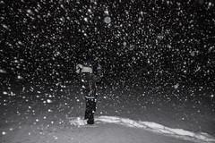 Mientras nieva (robertosanchezsantos) Tags: light usa snow newmexico luz walking noche nieve snowing caminata ruidoso mientras nieva