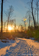 Alligator Hill ... into the sunset (Ken Scott) Tags: winter sunset usa michigan footprints lakemichigan greatlakes trail february hdr freshwater voted leelanau 2016 skitrack 45thparallel backpage alligatorhill sbdnl sleepingbeardunenationallakeshore mostbeautifulplaceinamerica