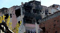 150 Suku Kurdi Dibakar Hidup-hidup oleh Pasukan Turki (mivt_art) Tags: kurdi turki konfliktimurtengah