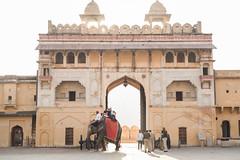 (Terrini) Tags: travel india palace unescoworldheritagesite jaipur rajasthan amberfort southasia