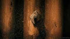 Rustic Web - 4k wallpaper DSC3411 ilce (cleansurf2) Tags: wallpaper abstract metal architecture rust arty steel widescreen web sony rustic a7 16x9 ilce a7ii