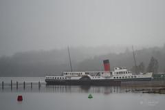 Fog on Loch Lomond (schrader_andy) Tags: mist water birds fog scotland lochlomond paddlesteamer