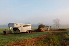 horse transport (gahenty) Tags: foggy e30 earlymorninglight victorianlandscape 1435mmf2