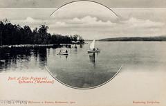 Sjön Fryken vid Rottneros, Värmland (mr.wiren) Tags: postcard värmland vykort selmalagerlöf rottneros fryken göstaberlingssaga