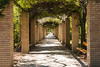 Zappeion Gardens II (v.theo) Tags: architecture athens greece zappeion rx100 rx100m2