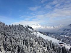 Magnifiques forts de sapins (Jauss) Tags: ski alps alpes sterreich neige alpen tyrol autriche kitzbhel
