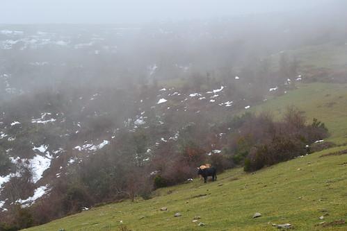 Senderismo por los Montes de Arrupia en Ojacastro y Valle de Iguareña en Valgañón Fotografía María Jesús (14)