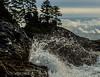 Where Wave Meets Shore (Zed Photography) Tags: ocean blue sea sky cloud tree nature water rock coast rocks wave shore splash crashingwave
