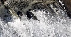 P1190778 (Rimager) Tags: water river waterfall dam fallingwater