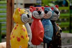 Alle reden von Osterhasen.......die sind komplett überschätzt..... (Sockenhummel) Tags: cats tiere fuji finepix fujifilm katzen bunt x30 figuren dekoration pflanzenkölle fujix30
