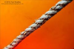 Orange (ScudMonkey) Tags: orange abstract canon fishing rope buoy 6d ef24105f4lis c2016paulbradley