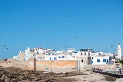IMG_3149 (alitopics) Tags: seagulls beach landscape amazing maroc medina paysage essaouira morrocco beachview amazingview