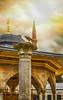 crow; istanbul_turkey (eks-i zîbâ) Tags: sunset cloud sun turkey istanbul mosque crow sophia haghia