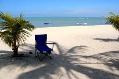 Beach & Shadow (Dex) Tags: shadow sea plant tree beach sand malaysia penang batuferringhi batuferingghibeach