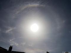 02apr16 solar halo (Wyld-Katt) Tags: sundog solarhalo
