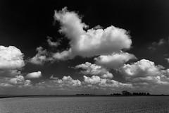 Sunny fields (++sepp++) Tags: bw field clouds germany de landscape bayern deutschland bavaria blackwhite cloudy feld wolken sunny sw monochrom sonnig landschaft frhling wolkig graben lnder einfarbig schwarzweis lechfeld