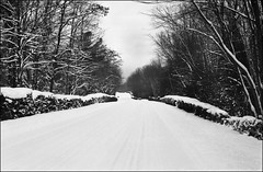 Untitled-3 (Eric Hartke) Tags: winter blackandwhite ilfordxp2 nikkormat ftn filmisnotdead ontarioparks sibbaldpointprovincialpark