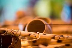 Batizado capoeira - musica ! (Triel-sur-Seine) (Pierre Fauquemberg) Tags: brazil france nikon capoeira bokeh lutte batizado combat instruments tamron iledefrance bois musique brsil corde yvelines trielsurseine tamron7020028 tamron70200mm28 nikond750 pierrefauquemberg