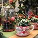Floristería FloryFauna: regalar flores