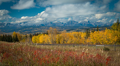 Fall Splendor - Redux (Patstirling) Tags: park trip travel blue autumn trees red sky orange foothills snow canada mountains green fall leaves yellow clouds landscape kananaskis 24105mmf4l roadtrip national alberta wife banff layers peaks transcanada hwy1 fav10 canon70d