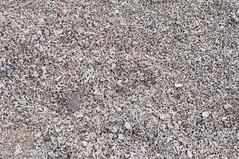 (Elenaire) Tags: trip travel ireland holiday travelling beach coral strand landscape nikon traveller traveling carraroe d5000