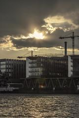 Westhafen Sunset (Fenchel & Janisch) Tags: frankfurt westhafen westhafentower frankfurtammain