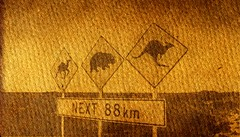 Nullarbor Road Signs (Abhiks) Tags: road sun sign print photography star strawberry feather un gerbera rap bling process footprint hyacinth photogram alternate emulsion anthotype