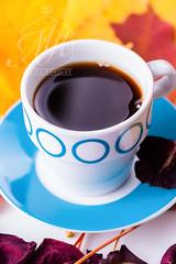 Coffee (monikakamelak) Tags: blue red brown white plant hot cup nature yellow leaf flora purple bright poland plate greens tableware pl mazowieckie sochaczew vegetableleaf