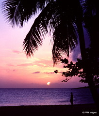 Sunset on St Martin (pandt) Tags: ocean sunset sea sky sun tree slr film beach clouds 35mm canon sand purple kodak ae1 outdoor shoreline stmartin palm explore palmtree caribbean kodachrome stmaarten seashore flick waterscape
