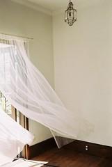 Spring (Alice Korotaeva) Tags: leica film japan photography wind interior cl