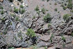 Black Canyon Formation (Paleoproterozoic, 1.759 Ga; Cold Shivers Point, Columbus Canyon, Colorado National Monument, Colorado, USA) 2 (James St. John) Tags: columbus black cold monument rock point colorado rocks plateau canyon formation national shivers schist precambrian metamorphic gneiss paleoproterozoic proterozoic