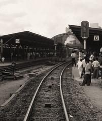 Thailand - Bangkok Hua Lamphong - The revival of Thai steam (3) (railasia) Tags: heritage monochrome thailand bangkok depart mikado eighties infra srt hualamphong metergauge heritagerun class900 manandrail steamlocotrain
